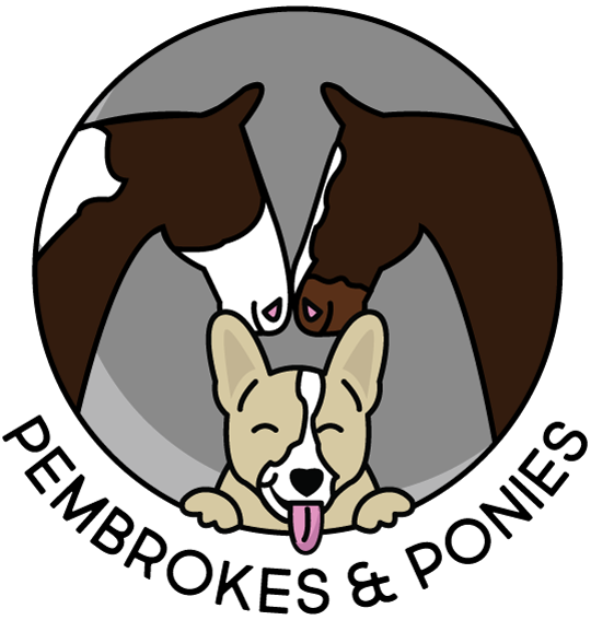 Pembrokes & Ponies
